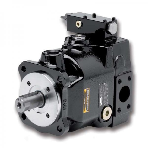 PAKER F12-030-MF-IV-K-000-000-0 Piston Pump #2 image